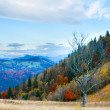 Autumn misty morning mountain panorama — Stock Photo