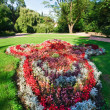 Flowerbed composition - Stock Photo