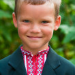 Portrait of nice little schoolboy — Stock Photo