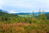 Vista para a montanha dos cárpatos setembro — Fotografia Stock