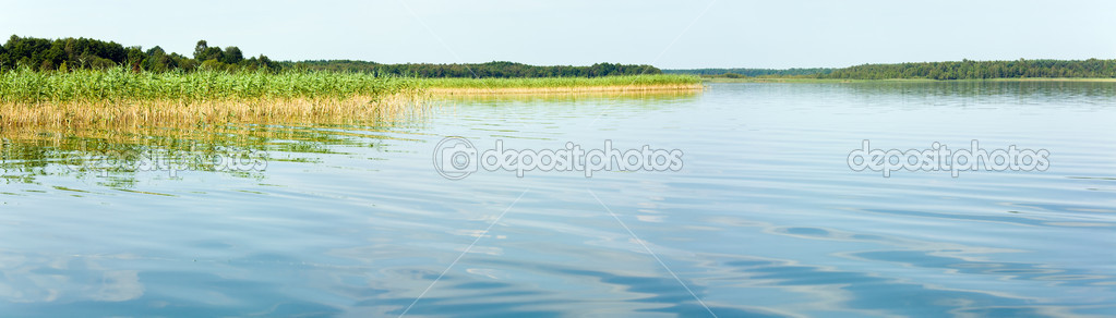 Summer rushy lake view with small grove on opposite shore.  Three shots stitch image. — Stock Photo #7123646