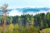 September Carpathian mountain view — Stock Photo
