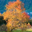 Autumn evening mountain hill - Stock Photo