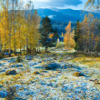 Autumn hoarfrost on mountain glade - Stock Photo