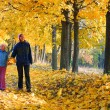 Family in autumn maple park — Stock Photo #7463674