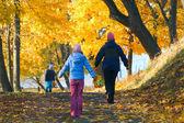 Family in autumn maple park — Stock Photo