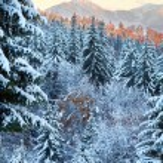 Winter sunset mountain landscape — Stock Photo #7560649
