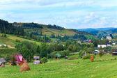 Summer mountain village — Stock Photo