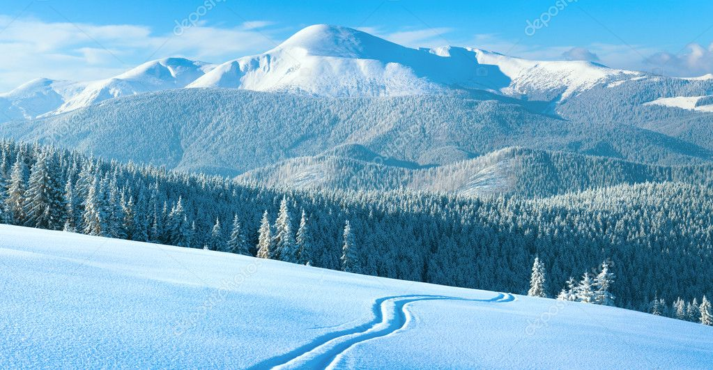 Morning winter calm mountain landscape with ski track and coniferous forest on slope (Goverla view - the highest mount in Ukrainian Carpathian). Four shots stit — Stock Photo #7580845