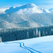 Royalty-Free Stock Photo: Winter mountain panorama with ski track