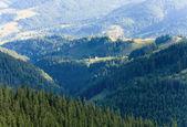 Summer mountain hamlet landscape — Stok fotoğraf