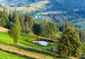 Summer mountain landscape with small pool — Stock Photo