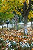 秋の道の近くのキリスト教クロスします。 — ストック写真
