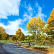 First winter snow and autumn colorful foliage near mountain road — ストック写真
