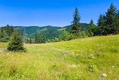 летний горный пейзаж — Стоковое фото
