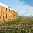 Stock Photo: Large hay bails