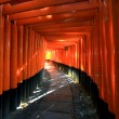 Torii in colorful leaf and tree in japan : Fujimi Inari Kyoto — Stock Photo