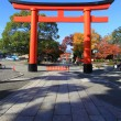Stock Photo: Torii in colorful leaf and tree in jap: Fujimi Inari Kouyou