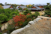 Nijo castle in colorful leaf and tree in japan : Kouyou — Stock Photo
