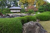 Nijo castle in colorful leaf and tree in japan : Kouyou — Stock Photo