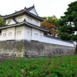 The UNESCO World Heritage Site - Nijo Castle , is a flatland castle located — Stock Photo
