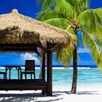 Tropical gazebo on amazing beach with palm tree — Stock Photo