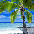 Empty hammock between palm trees — Stock Photo #7001118