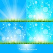 Tropical Grassline Banner — Stock Vector