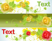 Set of Illustrated Flowers Banner — Stock Vector