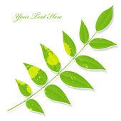 Isolated Green Splashy Leaf Twig — Wektor stockowy