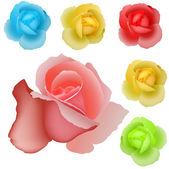 Rose belle vettoriale — Vettoriale Stock