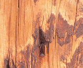 Dirty Wooden Texture Design — Stock Photo