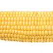 Stock Photo: Sweetcorn cob, isolated
