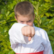 Packing  a punch — Stock Photo #7201847