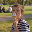 Little boy eating ice cream in a sunny park — Stock Photo #7630630