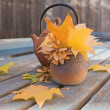 Stock Photo: Autumn tea