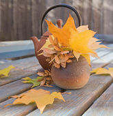 Autumn tea — Stock Photo