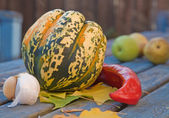 Still-life with garlic; pepper; ornamental pumpkin; maple leaves and seeds — Stock Photo