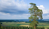 Central Finland, Horticultural landscape with lake in the distan — Stock Photo