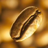 Macro image of coffee-bean — Stock Photo