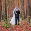 Foto Stock: Wedding couple in forest