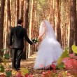 Couple walking over the forest — Stock Photo
