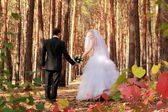 Couple walking over the forest — 图库照片