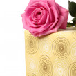 A part of present and a pink rose — Stock Photo