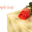 Present box and a coral rose — Stock Photo
