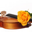 Fresh yellow rose on violin - Stock Photo