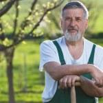 Portrait of a senior man gardening in his garden — Stock Photo #7416105