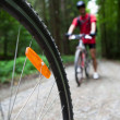 Mountain biking in a forest - bikers on a forest biking trail (s — Stok Fotoğraf #7416244