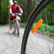 Mountain biking in a forest - bikers on a forest biking trail (s — ストック写真