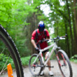 Mountain biking in a forest - bikers on a forest biking trail (s — Stok fotoğraf